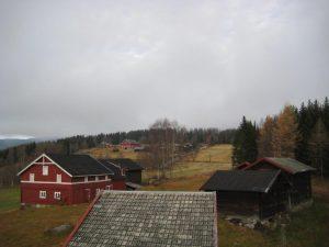 I skogen ovenfor gårdene ligger åkrer ryddet på 700-tallet.Foto: Buskerud fylkeskommune