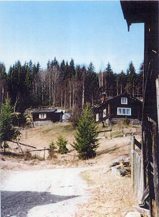 16. Småbruket Teigen i Børtnesødegårdene i Nes. Svein Sveinson vokste opp her. Fra Hallingdal Museums bildearkiv.