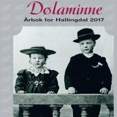 Bra lesestoff: Dølaminne 2017
