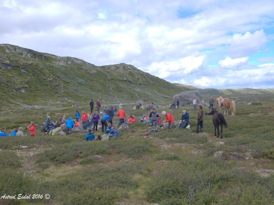 886af46b1 Ord ved Dansarsteinen – Nes historielag