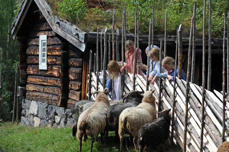 Medlemstur til Maihaugen